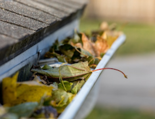 Jump Start Your Home for Spring